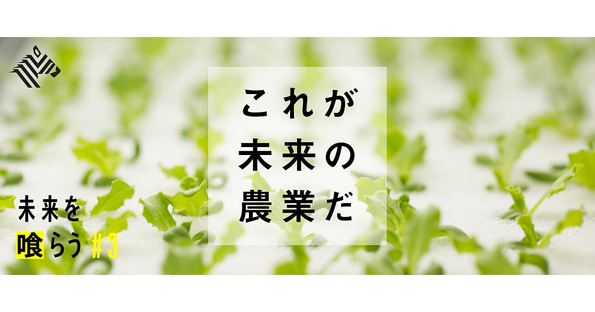 野菜 ホリエモン