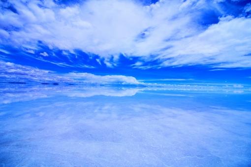 「青天井」の画像検索結果