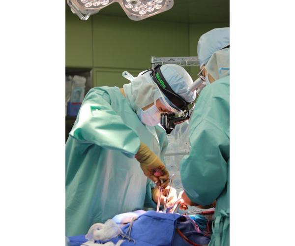 現在、主任外科医として数多くの手術を執刀しています。医療に完成形はなく、安全で質の高い医療の提供を追い求め続けたいと思います。