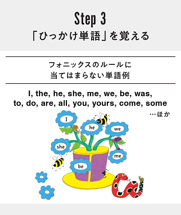 英 単語 l から 始まる